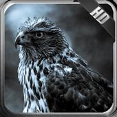 Eagle Wallpaper 1.5