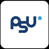 PSU AR 1.05