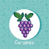 Memory Game Fruits - GrapeIC001 1.2