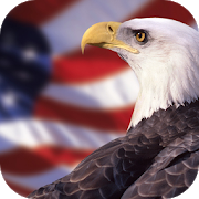 American Eagle Wallpapers 1.0