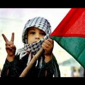 Konflik Palestina 1.1