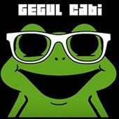com.Orcnylmz.gegulcabi icon