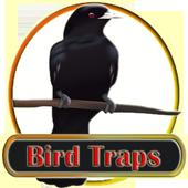 Bird Traps 1.0