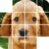 puppy puzzles game