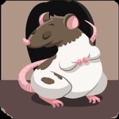 Rodent Trivia 1.5682