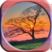 Sunrise Image Animation 1.0