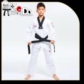 Taekwondo Techniques 1.0