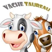Vache Taureau 1.1