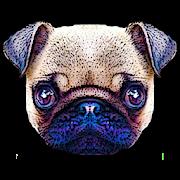 Puppystry 1.0.0