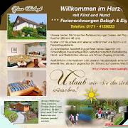 Ferienwohnungen Harz 5.728