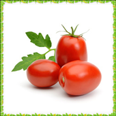 New Tomato Onet Connect Game 1.0