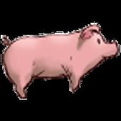 Pouncing Piggy 5