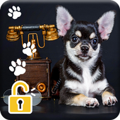 Chihuahua Puppy Dog PIN Lock Screen Wallpaper 1.0