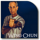 Wing Chun Lessons 1.4