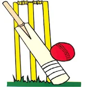 Cricket Score Counter 2.2.3