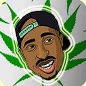 cannabis adventure 8.0
