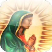 La Virgen de Guadalupe 1.0