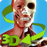 Easy Anatomy 3D(learn anatomy) 5 0 APK Download - Android Education Apps