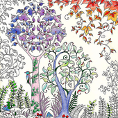 Adult Coloring Pages 1.0.0