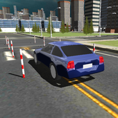 Dynamic Driving Test 3D 1.2