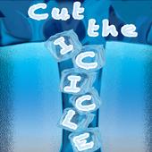 Cut the Icicle-Endless PhysicsMuniraj SunderavelAction