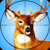 Deer Hunting - 2015 Safari 3.4
