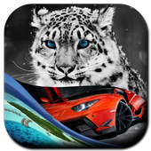HighDefinition Wallpapers Lite 1.0
