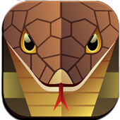 Angry Slither Anaconda Attack 1.2