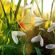 Spring Live Wallpaper 1.0.6