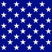United States Constitution 2