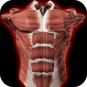 Essential Anatomy 3 for Orgs  1 1 3 APK + OBB (Data File) Download