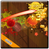 Guide For Fruit Ninja 1.0