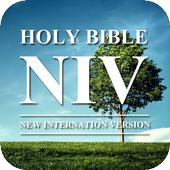 Audio Bible NIV Free 2.3