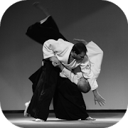 Aikido Lessons 1.0