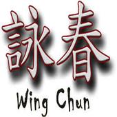Wing Chun 1.0