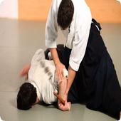 Learn Aikido 1.1.2