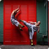 Kung Fu 1.0