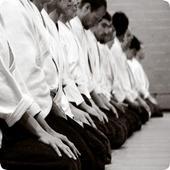 Learn Aikido 1.0