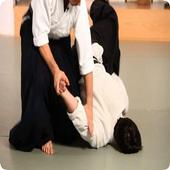 Learn Aikido 1.0
