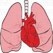 CardioPulmonary Sounds 6.0