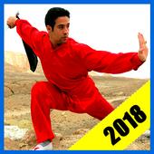 Learn Kung Fu 1.2