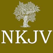 Holy Bible NKJV Offline - New King James Version 3