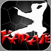 Shotokan Karate:lessons,Training,Moves 1.0