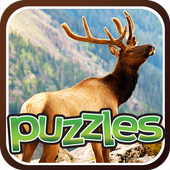 Animals Puzzle Games For Kids 2