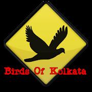 Kolkata Birds 1.0