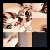 PicturePuzzleV2 1.0