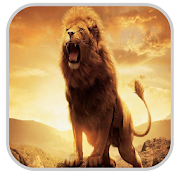 Lion Wallpapers HD 1.3