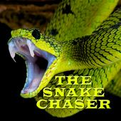 The Snake Chaser 1.0.1