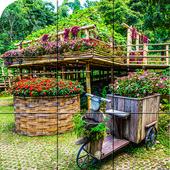Puzzle - Beautiful backyard 1.06
