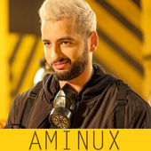 aminux 2017